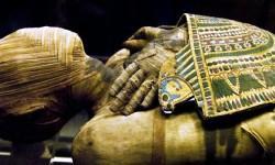 mummia 800x400