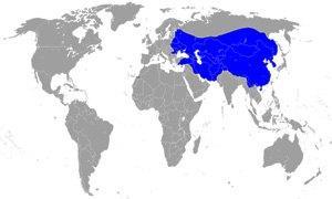 impero-mongolo-300X180