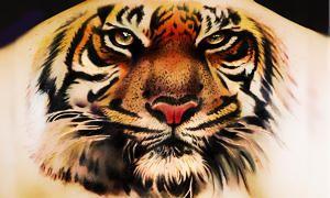 tatuaggio tigre-300X180