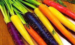 carote colorate-300X180