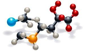 Antiossidanti e radicali liberi 1-300x180