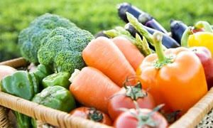 5 regole per una corretta alimentazione-alimentazione equilibrata-300x180