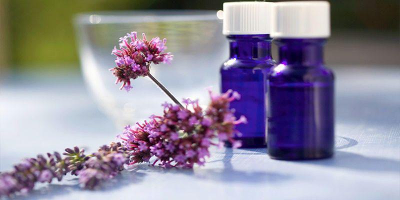 Fitoterapia- curarsi con le piante 3