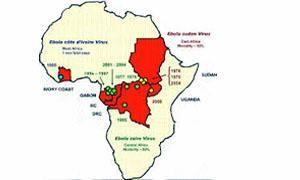 Ebola-Origine e habitat naturale-300x180