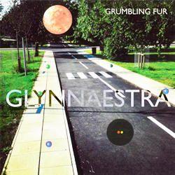 I migliori album musicali del 2013-Vampire Weekend - Grumbling Fur - Glynnaestra-250x250