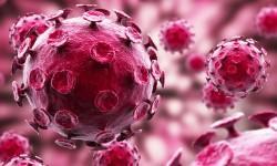 L'epatite C (Epatite virale da HCV)- una malattia contagiosa e letale 3-800x400