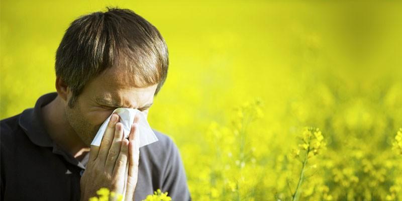 Allergie- le 5 cause principali 2-800x400