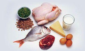 Fabbisogno di proteine-300x180