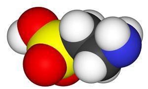L'abc degli amminoacidi -parte quinta-300x180
