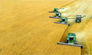 L'agricoltura nel mondo-300x180
