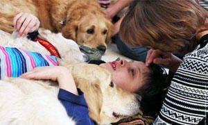 Gli effetti della Pet Therapy-300x180