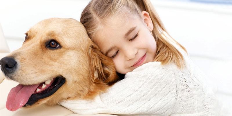 La Pet Therapy 2-800x400