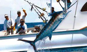 La pesca sportiva-300x180