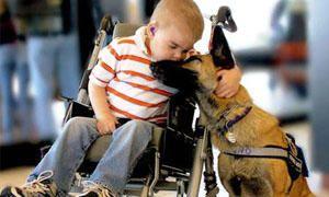 Lo sviluppo della Pet Therapy-300x180