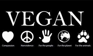 Cosa significa vegan-300x180