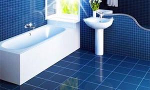 Pulire il bagno di 20 minuti e come liberarsi da tarme e camole-300x180