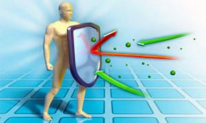 Risultati immagini per meccanismo del corpo umano