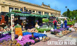 Cattolica in fiore – Cattolica (Rimini)-300x180