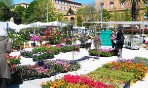 Giardino in fiore – Ancona-300x180