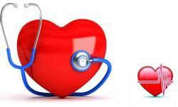 Le regole che salvano il cuore 2-800x400