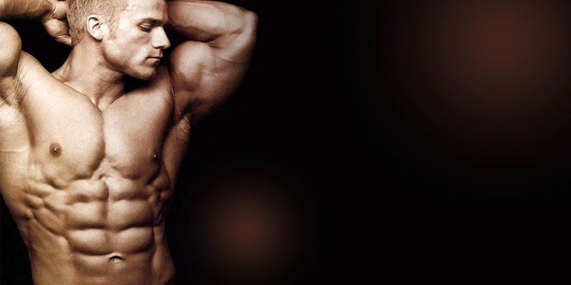 il sistema muscolare 3