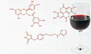 Quali sono le caratteristiche chimiche dei vini-300x180