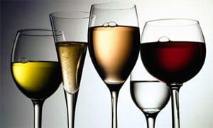 Quali sono le caratteristiche dei vini-300x180