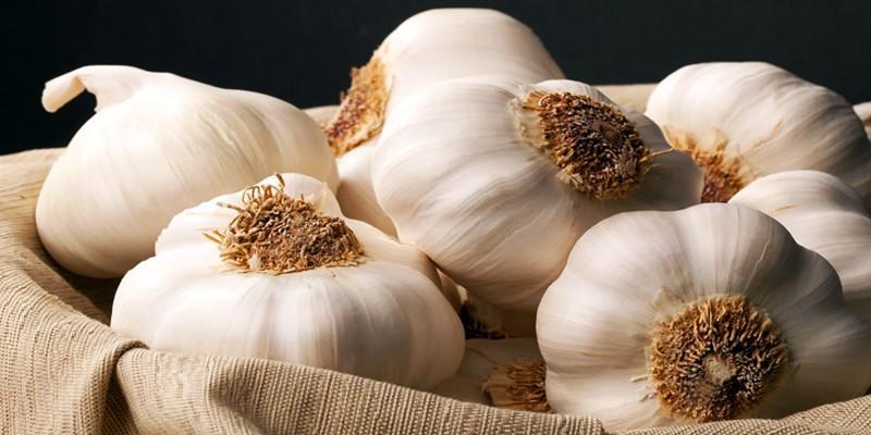 l'aglio 1-800x400