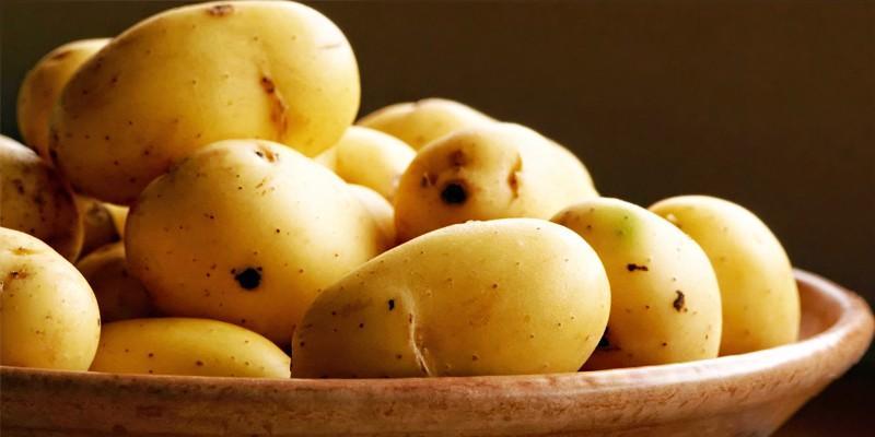 La patata1-800x400