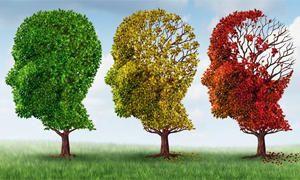 Alzheimer-300x180