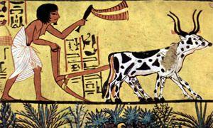 Abitudini alimentari ancestrali e l'invenzione dell'agricoltura-300x180