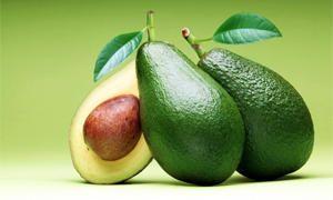 Frutta oleaginosa (Parte prima)-300x180