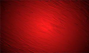 foto5-rosso-300x180