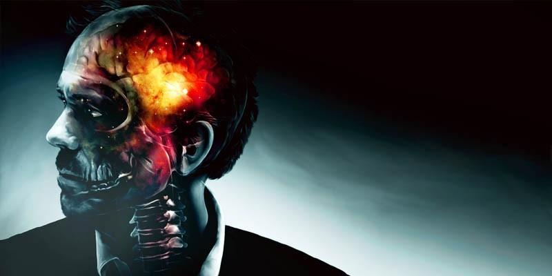 Il cervello4-800x400