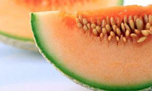 Melone-300x180