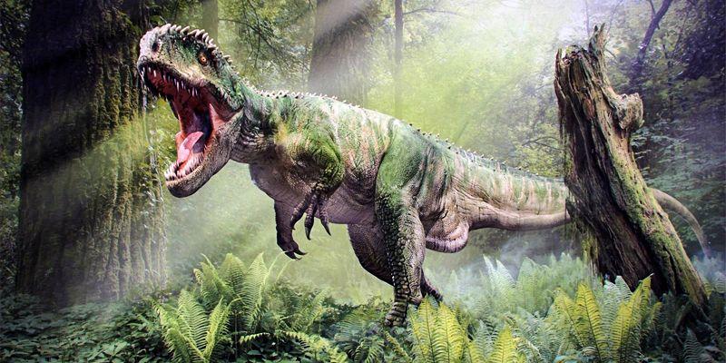 La verità sui dinosauri-800x400