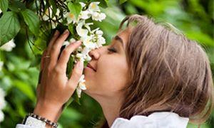Le fragranze più ricercate-300x180