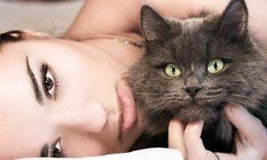 Il gatto e l'uomo-300x180