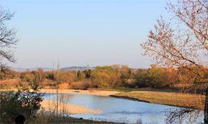 Oasi Faunistica e osservatorio ornitologico del Conca-300x180