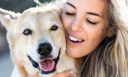 I cani, abili manipolatori e simpatici scrocconi1-800x400