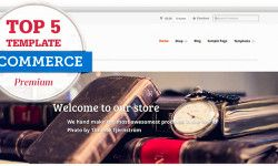 Top 5 Template E-commerce Premium-800x400
