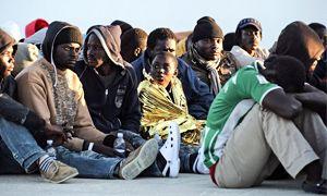 I migranti portano le malattie-300x180