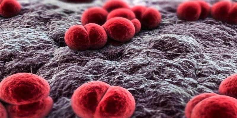 Meningite1-800x400