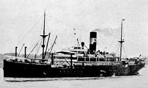 La scomparsa del Waratah-300x180