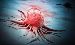 Nuove armi contro i tumori-800x400