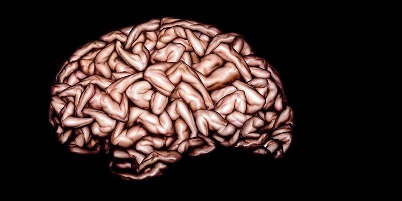 Le tecniche cervello1-800x400