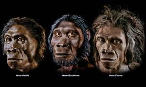 Parliamo da ben due milioni di anni-300X180