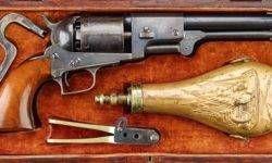 Colt1-800x400