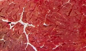 carne rossa-300x180