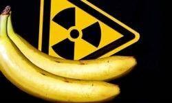 Le radiazioni-800x400